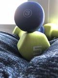 Gewichten na een training stock foto