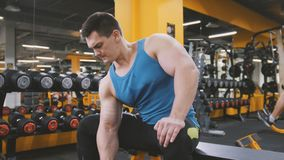 Gewichtheffen in de gymnastiek - de spieratleet voert opleiding voor bicepsen met domoren uit Royalty-vrije Stock Foto