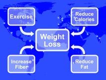 Gewichts-Verlust-Diagramm, das Faser-Übungs-Fett und Kalorien zeigt Lizenzfreies Stockfoto