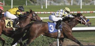 Gewinnen seines ersten Rennens Lizenzfreies Stockfoto