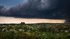 Gewitter über einem Sommerfeld Stockbild