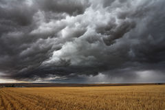 Gewitter über Feldern. Stockbild