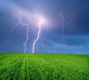 Gewitter mit Blitz auf dem Gebiet Stockfotos