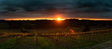 Gewitter mit Sonnenuntergang auf dem Traubengebiet Lizenzfreies Stockbild