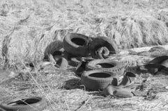 Geworfen in einen Abzugsgraben, der zerrissen wird, ermüdet, Schwarzweiss Stockfoto