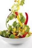 Geworpen Salade Royalty-vrije Stock Afbeelding