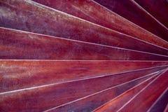 Gewundene Beschaffenheit von Grunge-roten hölzernen Bars für Hintergrund lizenzfreies stockfoto