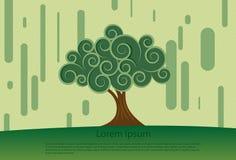 Gewundener Baum Stockbild