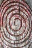 Gewundenes Symbol graviert auf der Barke eines Baums stockbilder