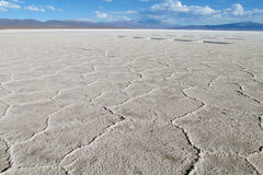 Gexagonal texture of salt at the surface of Uyuni Salar, Bolivia Stock Images