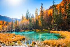 Geyser λίμνη με το τυρκουάζ νερό στα βουνά Altai φθινοπώρου, Σιβηρία, Ρωσία στοκ φωτογραφία με δικαίωμα ελεύθερης χρήσης