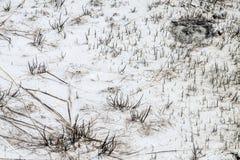 Geyser καυτό ελατήριο Στοκ Εικόνα