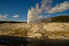 geyser κυψελών Στοκ εικόνα με δικαίωμα ελεύθερης χρήσης