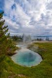 geyser λεκανών δυτικό yellowstone αντίχειρων Στοκ Φωτογραφία