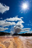Geyser Royalty Free Stock Photo