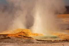 Geyser. Site in Yellowstone Park stock image