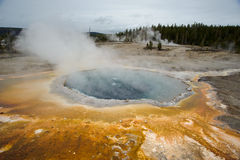 Geyser. In Yellowstone with yellow bacteria Royalty Free Stock Image