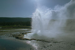 Geyser. At yellowstone stock photo
