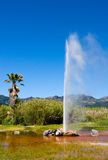 Geyser Royalty Free Stock Photos