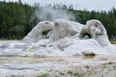Geyser al Yellowstone Fotografia Stock Libera da Diritti