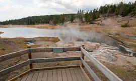 Geyser Artesia δίπλα στη λίμνη Firehole στη χαμηλότερη Geyser λεκάνη στο εθνικό πάρκο Yellowstone στο Ουαϊόμινγκ ΗΠΑ Στοκ Εικόνες