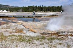 Geyser attivi nel parco nazionale di Yellowstone, Wyoming, U.S.A. Fotografie Stock