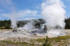Geyser attivi nel parco nazionale di Yellowstone, Wyoming, U.S.A. Fotografia Stock