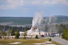 Geyser attivi nel parco nazionale di Yellowstone, Wyoming, U.S.A. Fotografia Stock Libera da Diritti