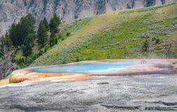 Geyser azul da associação - mola do monte no parque de Yellowstone Área de Mammoth Hot Springs closeup imagens de stock
