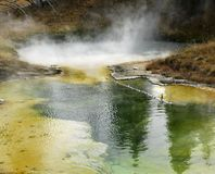 Geyser basin Stock Images