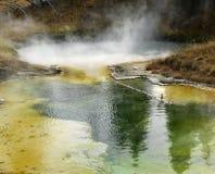 Geyser basin Stock Images