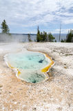 Geyser basin in Yellowstone Royalty Free Stock Photography