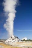 Geyser branco da abóbada Fotografia de Stock