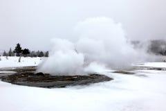 Geyser chaud en parc national de Yellowstone, Etats-Unis Image libre de droits