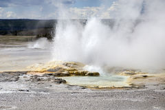 Geyser chez Yellowstone image stock
