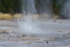 Geyser Close-Up. A geyser close up using a high speed shutter to freeze the action. Located in Yellowstone National Park Royalty Free Stock Photos