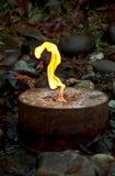 Geyser d'incendie Image libre de droits