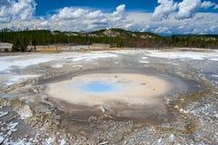 Geyser da pérola em Norris Geyser Basin no parque nacional Wyoming EUA de Yellowstone Imagens de Stock