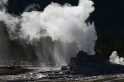 Geyser de château en stationnement national de Yellowstone Image libre de droits