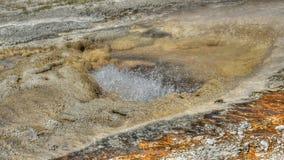 Geyser de ebulição em Yellowstone fotos de stock