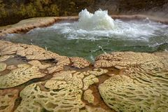 Geyser de explosion thermique de Hot Springs photo stock