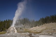 Geyser de Lone Star foto de stock royalty free