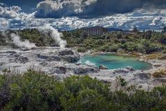 Geyser de Whakarewarewa au parc thermique de Te Puia, Nouvelle-Zélande images stock