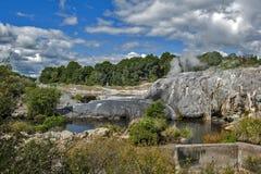 Geyser de Whakarewarewa no parque térmico de Te Puia, Nova Zelândia Foto de Stock
