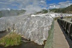 Geyser de Whakarewarewa no parque térmico de Te Puia, Nova Zelândia Imagens de Stock Royalty Free