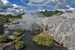 Geyser de Whakarewarewa no parque térmico de Te Puia, Nova Zelândia Imagens de Stock