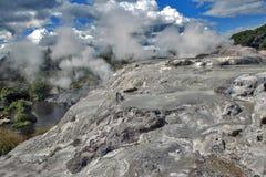Geyser de Whakarewarewa no parque térmico de Te Puia, Nova Zelândia Fotos de Stock Royalty Free
