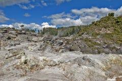 Geyser de Whakarewarewa no parque térmico de Te Puia, Nova Zelândia Fotografia de Stock