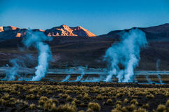 Geyser del Tattio - Atacama Royaltyfri Fotografi