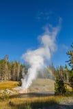 Geyser della riva del fiume alla sosta nazionale del Yellowstone fotografie stock libere da diritti